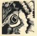 eye-lr
